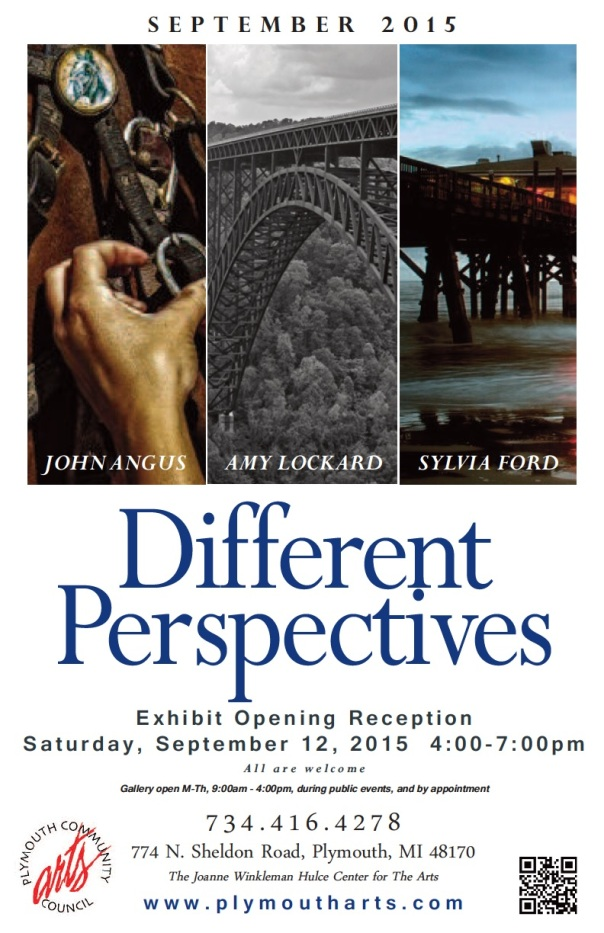 Different Perspectives poster REV8-30jpeg (1)