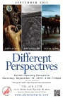 Different Perspectives- New Show